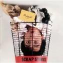 Scrapstories